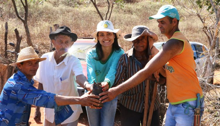 Prefeitura de Ibiassucê realiza Semana do Meio Ambiente